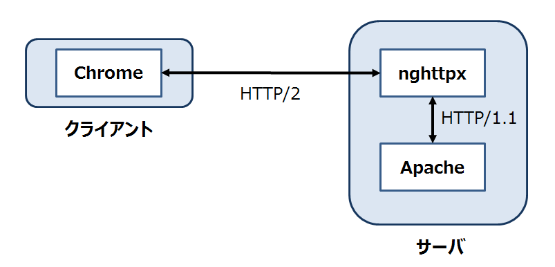 client-proxy-webserver