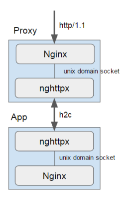 nginx-and-nghttpx